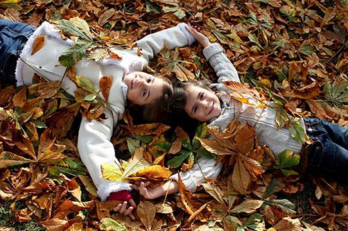 Осенние каникулы 2013