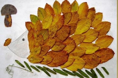 Гербарий своими руками Осенний листопад. Мастер-класс с 89